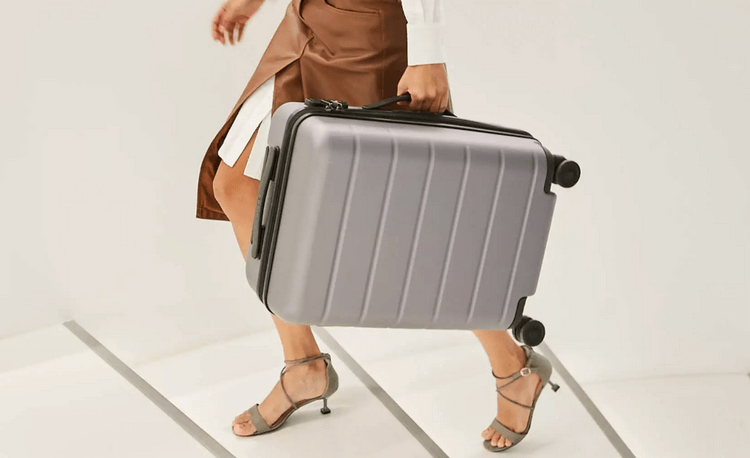 Luggage Classic_10.png